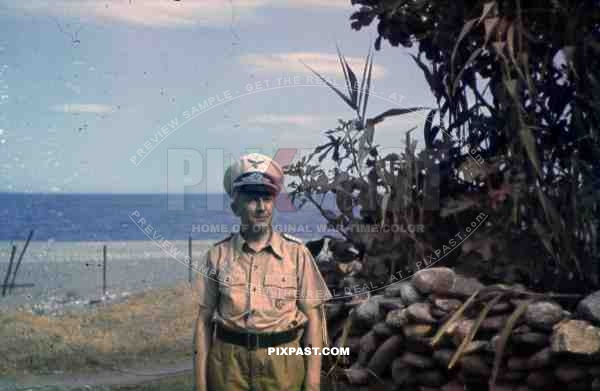 WW2 color Luftwaffe Field Division 2nd Lufllotte Sicily 1943 tropical uniform pilot German War Merit Cross KvK